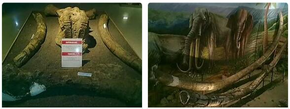 Sangiran Paleontological Site (World Heritage)